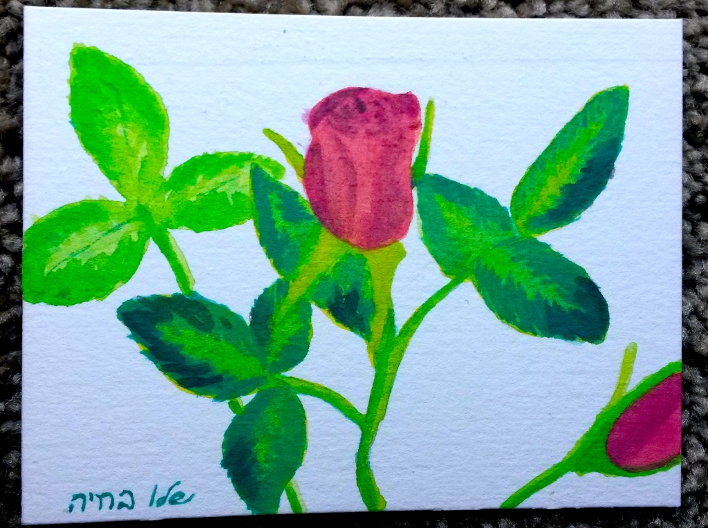 Test Rose
